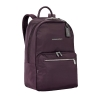 Briggs-Rhapsody-Backpack